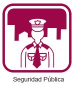 Iconos_Seguridad